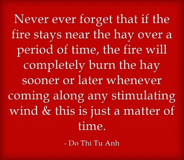 the fire & the hay